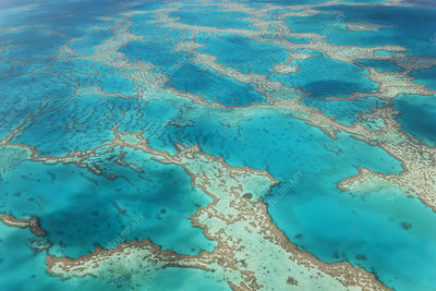 Aerial view of turquoise reef in the Pacific Ocean