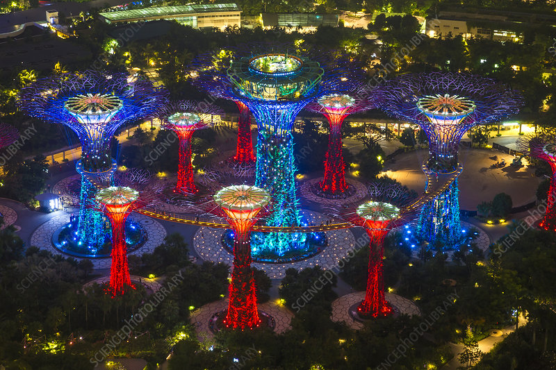 Supertree Grove, Gardens by the Bay, Singapore, at night