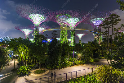 Night view, Supertree Grove, Gardens by the Bay, Singapore
