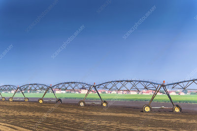 Automated irrigation sprinklers