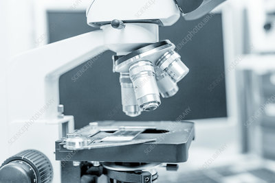 Microscope stage and lenses