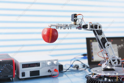 Robotic arm holding apple