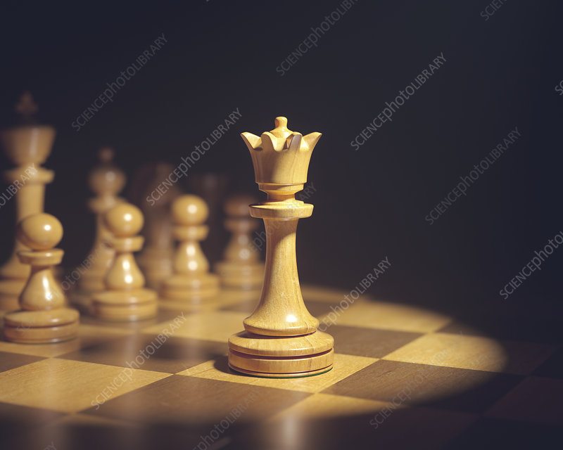Chess queen on board