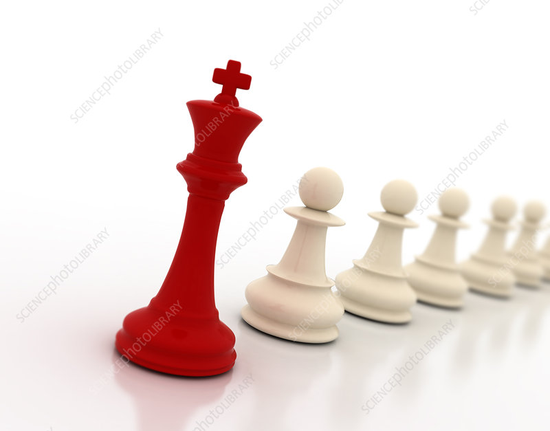 Chess king and pawns, illustration