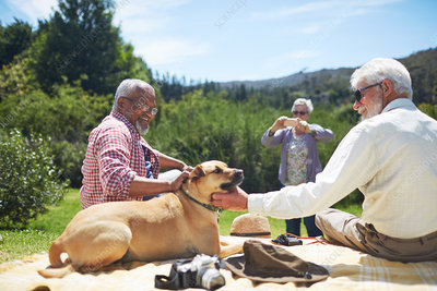 Senior men friends petting dog