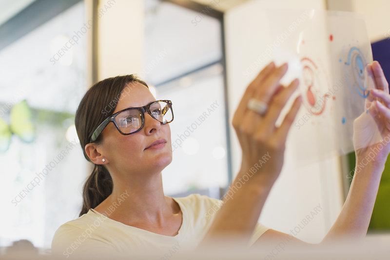 Designer examining transparency diagram in office