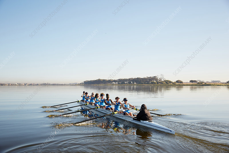 Female rowing team rowing scull on tranquil lake
