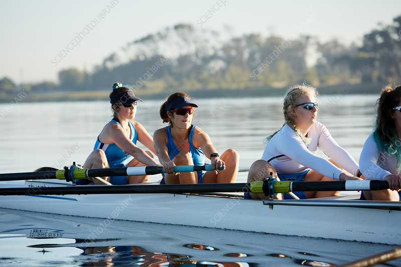 Female rowing team rowing scull on sunny lake