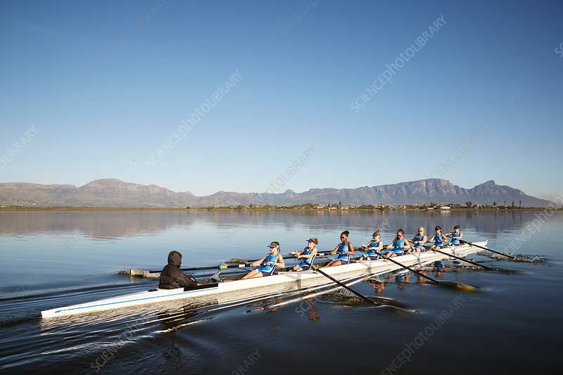 Female rowers rowing scull