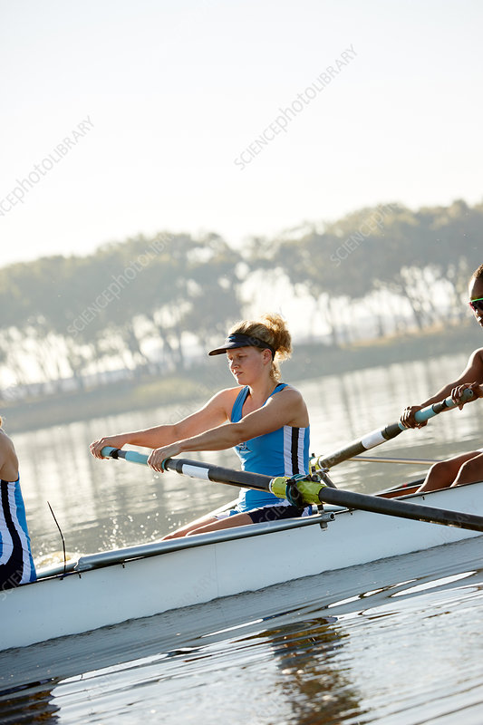 Determined female rower rowing scull on lake