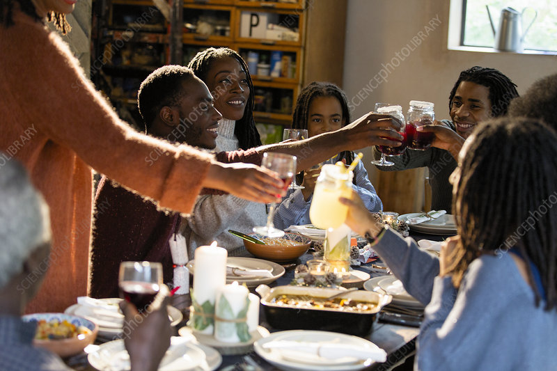 Family toasting glasses at Christmas dinner