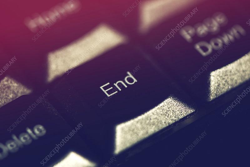 Computer keyboard End key