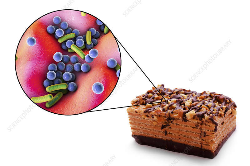 Foodborne infection, conceptual illustration