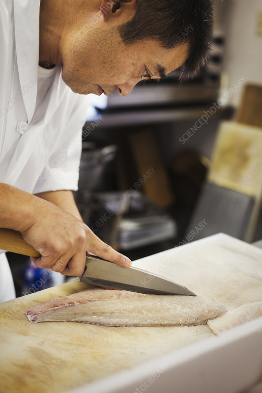 Chef in a Japanese sushi restaurant preparing fish for sushi