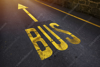 Bus lane road markings