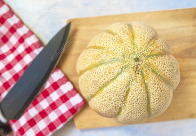 Cantaloupe melon in kitchen