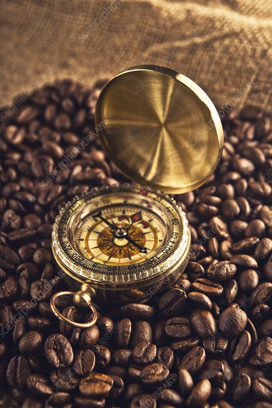 Coffee beans and compass
