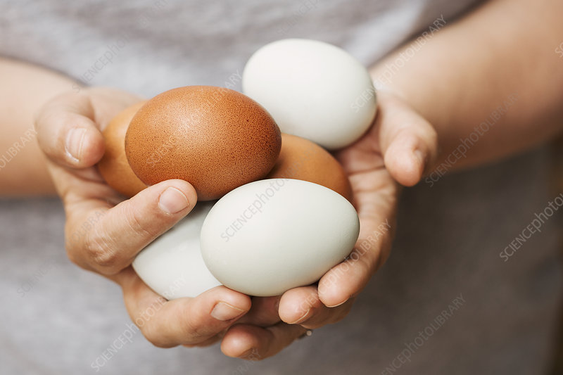 A woman holding hands full of fresh eggs