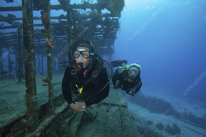 Two divers swimming around a shipwreck