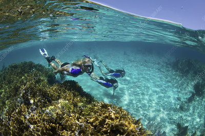 Over under of three snorkelers underwater on reef