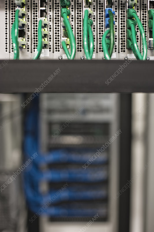 Cat 5 cables plugged into an individual server