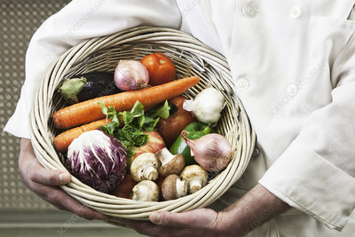 Chef holding a basket of freshly picked vegetables