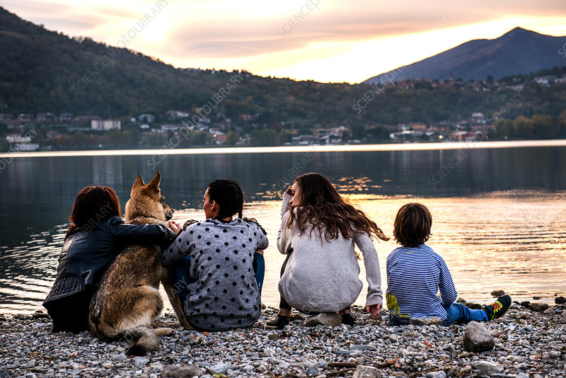 Rear view of boy with family and dog at dusk, Italy