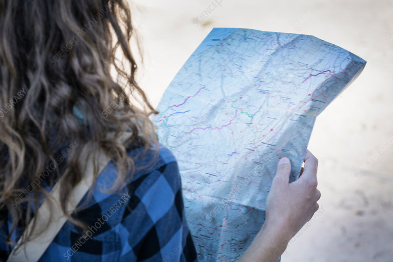 Cropped view of woman looking at folding map