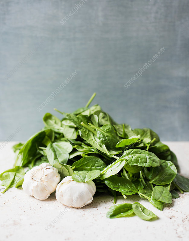 Fresh spinach leaves and garlic