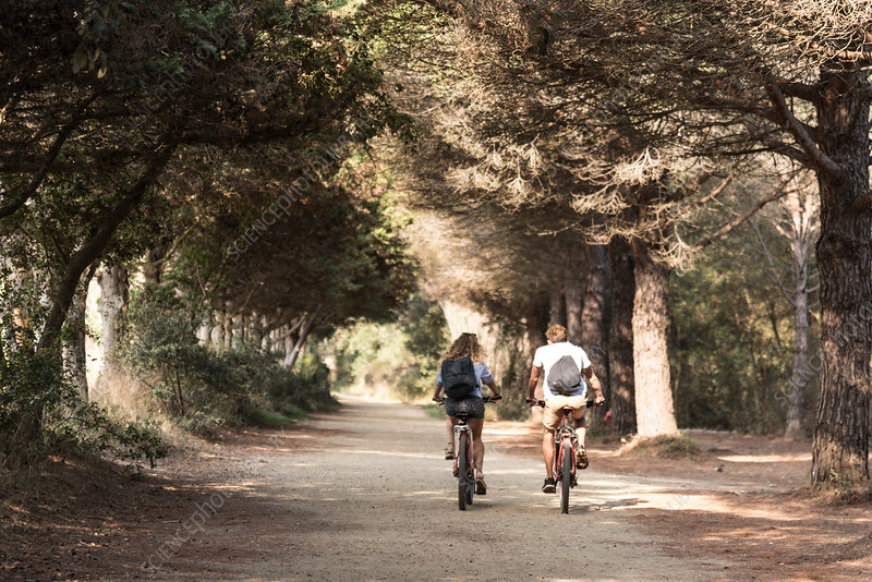 Couple cycling along tree lined road, France