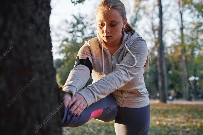 Woman training in park, touching toes against tree trunk