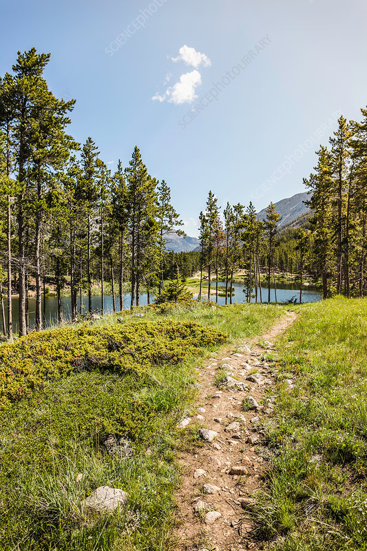 Path by lake, Montana, US