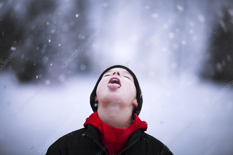 Portrait of boy catching falling snow on tongue