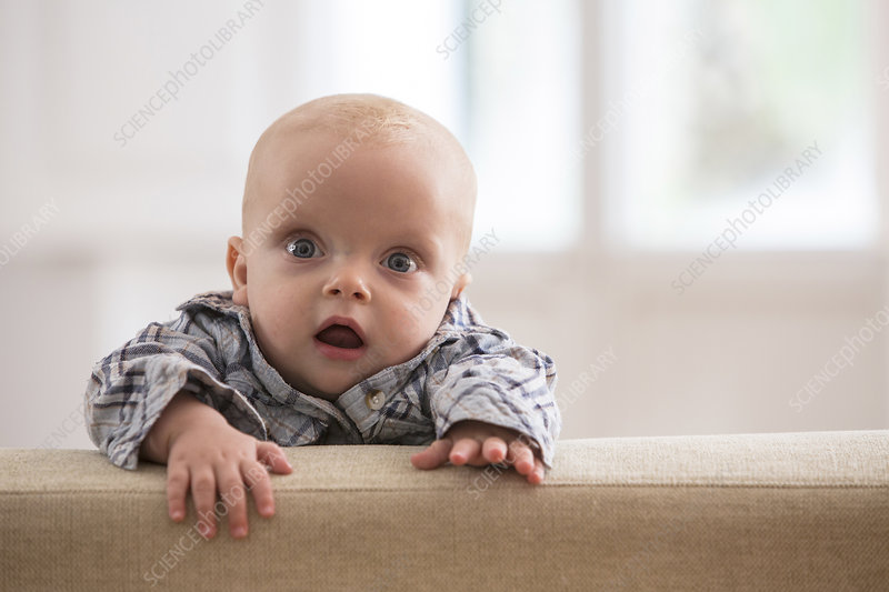 Portrait of baby boy, climbing on sofa