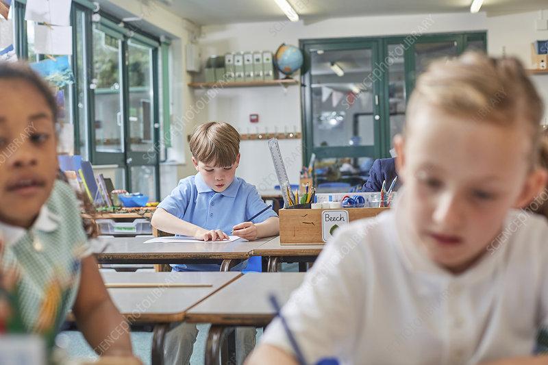 Primary schoolboy and girls doing schoolwork