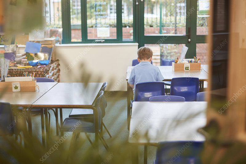 Schoolboy sitting at desk in classroom, rear view
