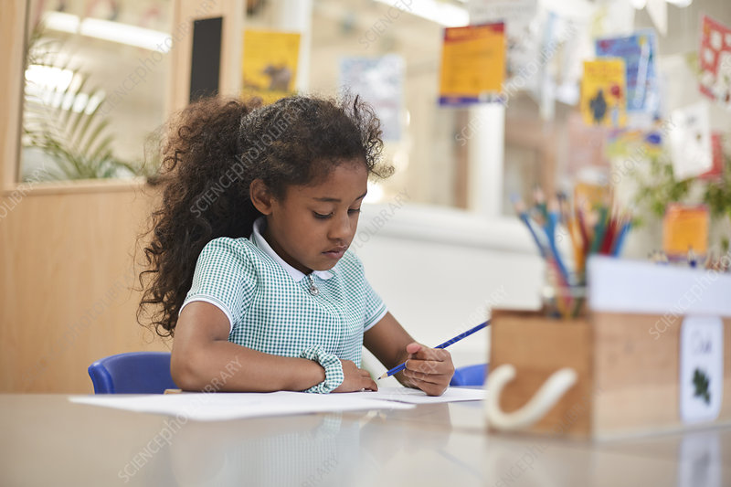Schoolgirl writing at classroom desk in primary school
