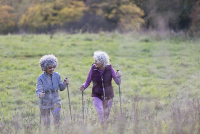 Active senior women friends hiking with poles