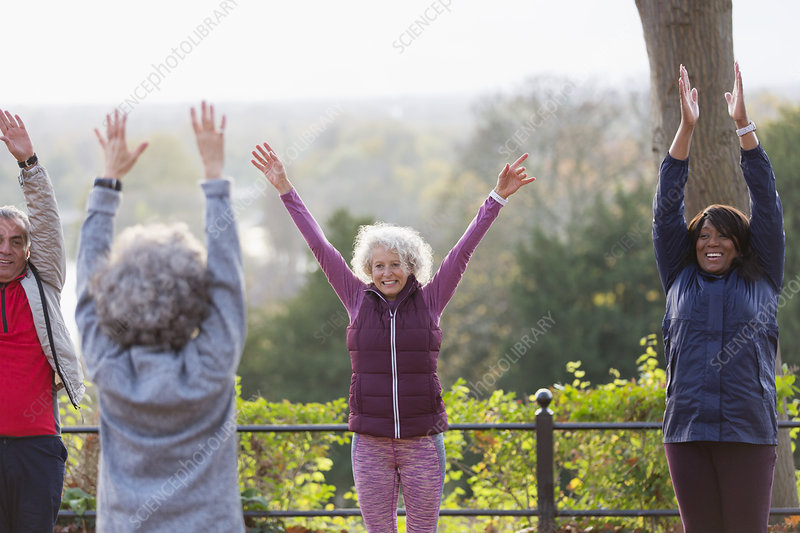 Confident, energetic seniors practicing yoga in park