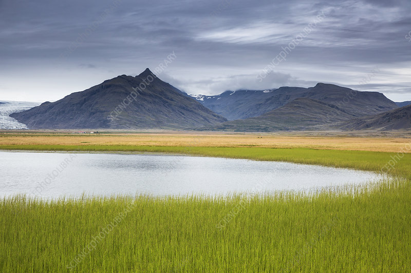 Mountain landscape with fresh, green grass, Iceland