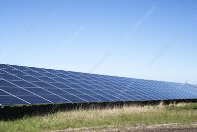 Solar panels in field