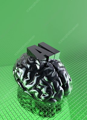 AI and human brain, conceptual illustration