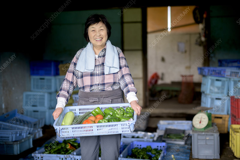 Woman in front of barn, holding crate with fresh vegetables