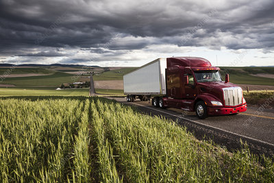 Truck driving though wheat fields of eastern Washington, USA