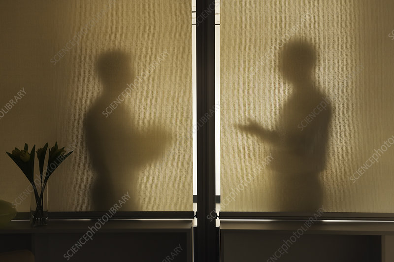 Two businessman in a meeting behind a window