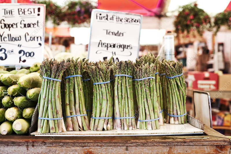 Fresh green asparagus at a fruit and vegetable market