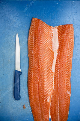Fillets of fresh salmon and knife on blue chopping board