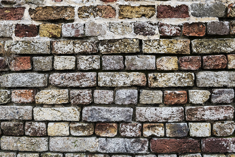 Brick wall with bricks in a variety of colours and textures