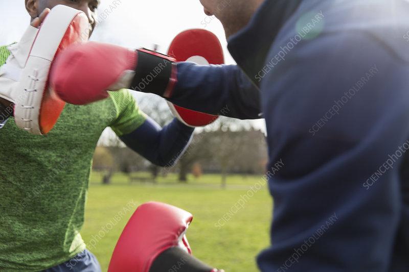 Men boxing in park