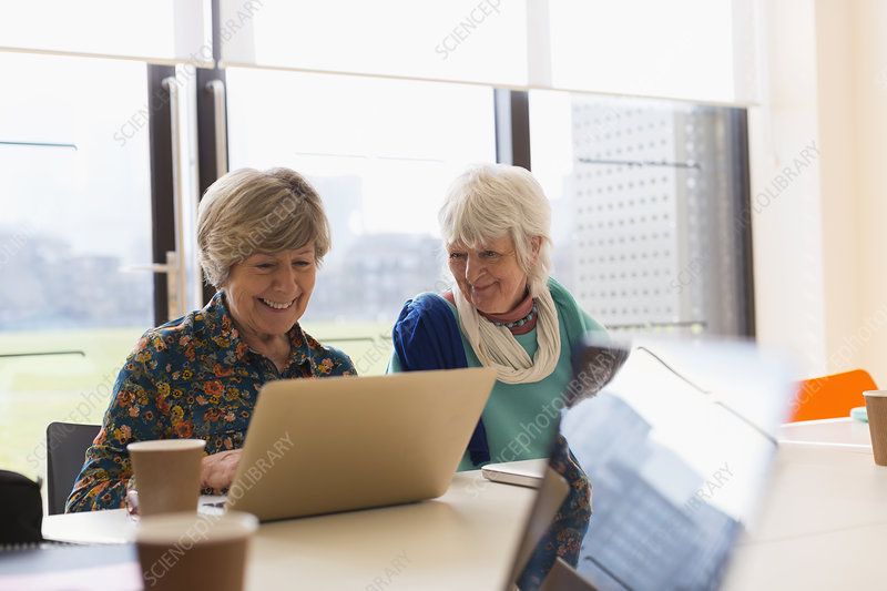Senior businesswomen using laptop in meeting